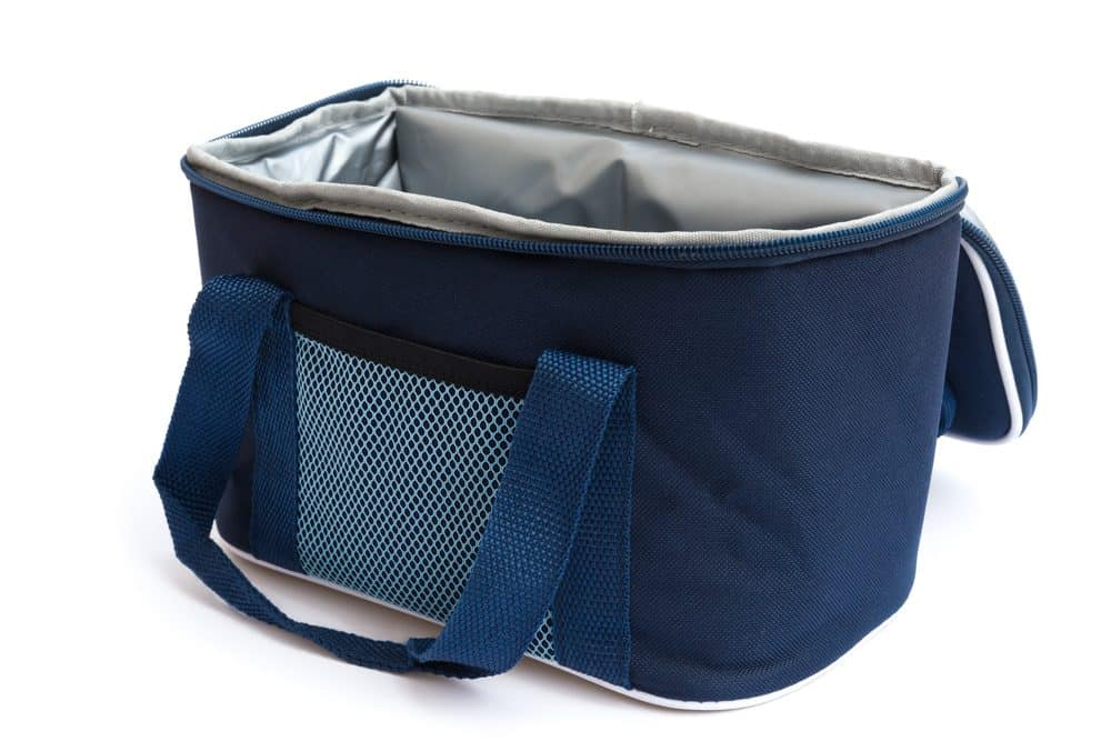 Keep Cool When SHTF With Our Favorite Coolers of 2020 1