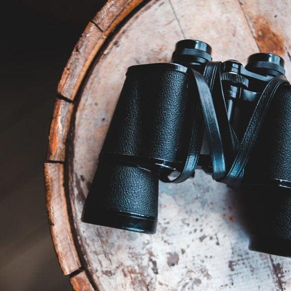 The Best Binoculars of 2021: Keep Lookout, Stalk Prey, & Be Prepared 6