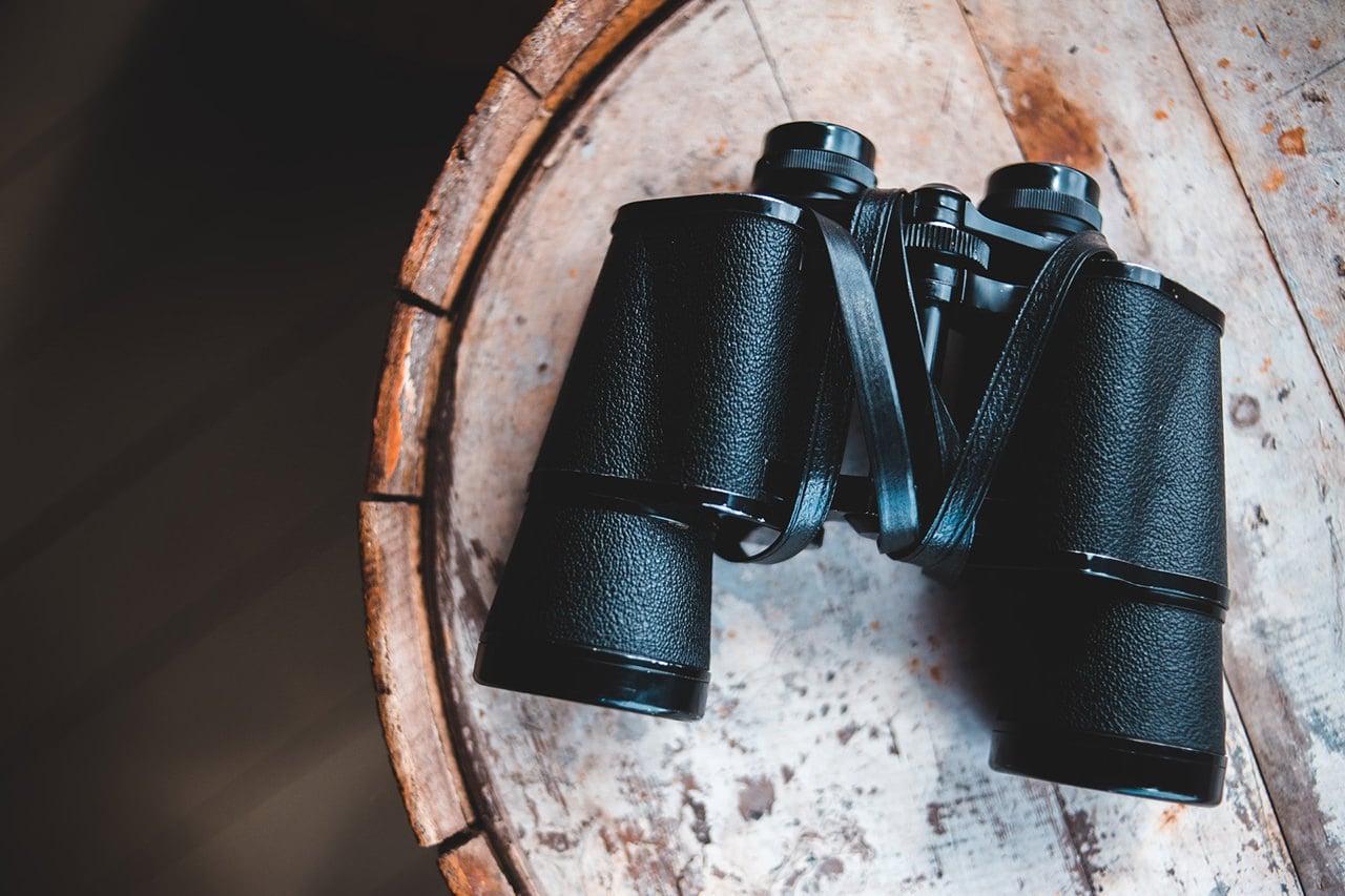 The Best Binoculars of 2021: Keep Lookout, Stalk Prey, & Be Prepared 1