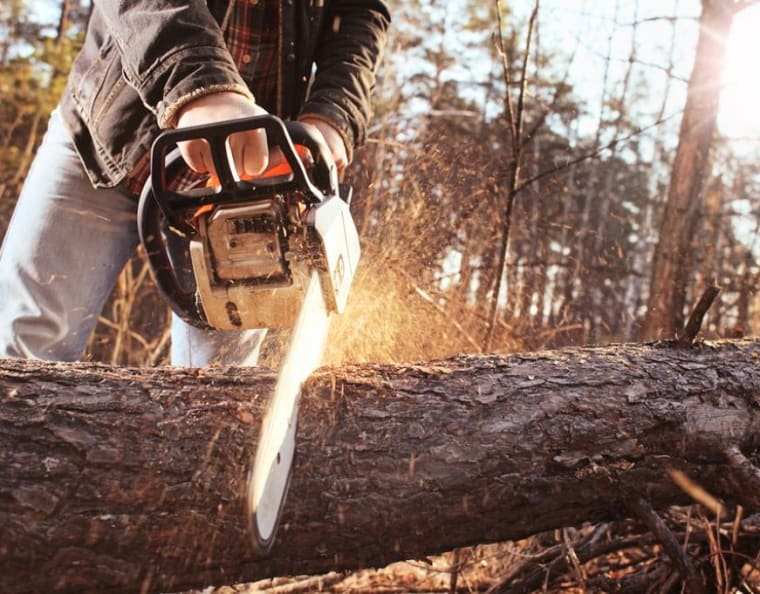 Discover These Beastly Chainsaws To Cut Through Almost Anything 1