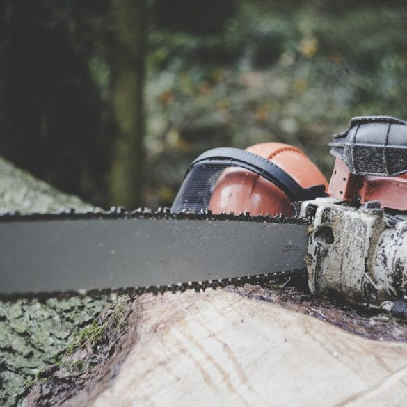 Best Chainsaws of 2021: Cut Through (Almost) Anything 10