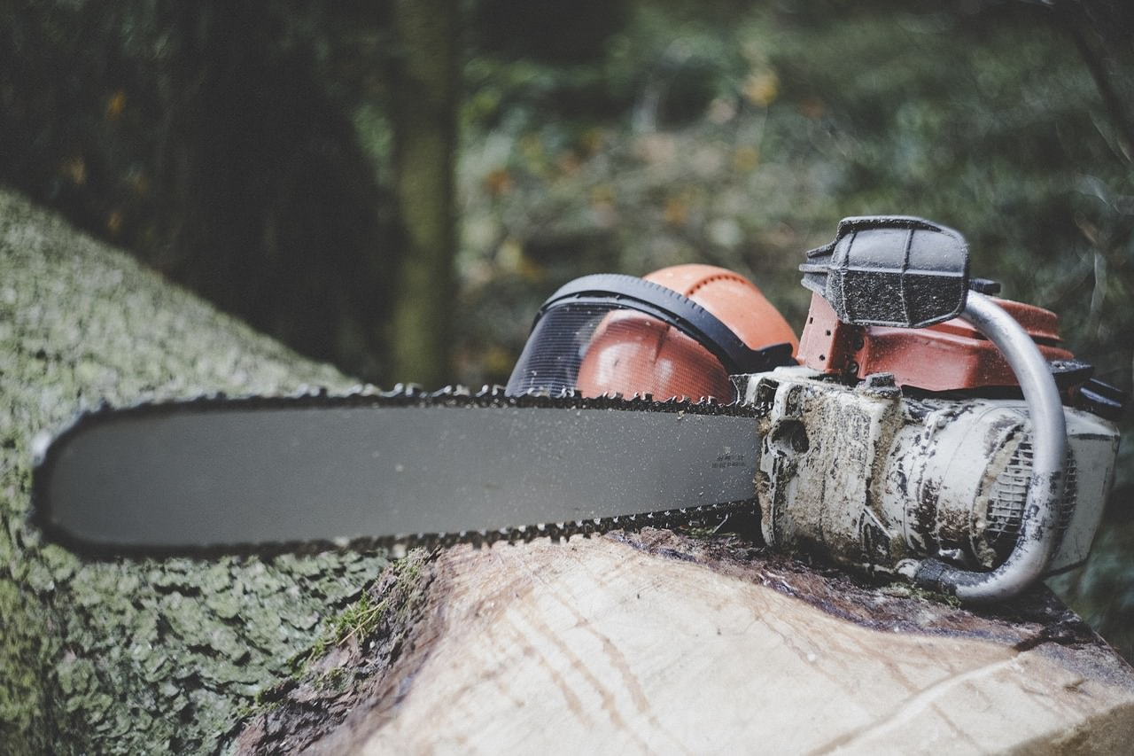 Best Chainsaws of 2021: Cut Through (Almost) Anything 1