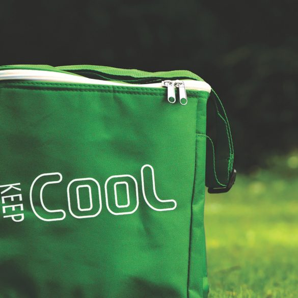 The Best Coolers of 2021 4
