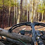 The Best Crossbows of 2020 13
