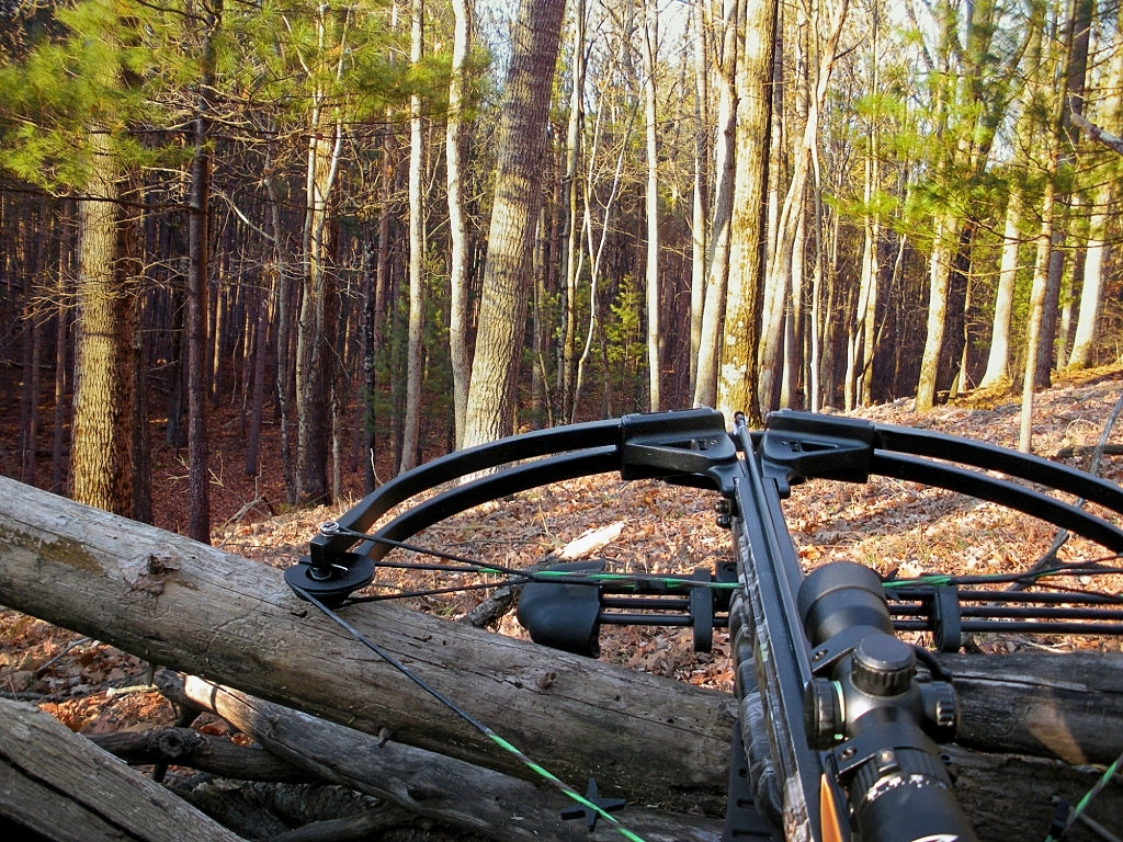 The Best Crossbows of 2020 2