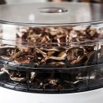 We Reveal the Top 3 Dehydrators of The Year 7