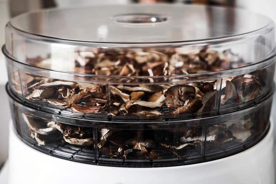 We Reveal the Top 3 Dehydrators of The Year 1